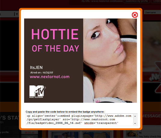 MTV Next Or Not Hottie of The Day Badge